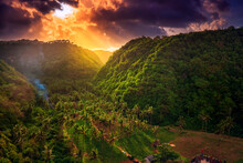 Amazing Sunrise Over A Mountain Gorge Overgrown With Wild Palm Trees Against A Nature Landscape