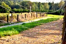 Country Border. Barbed Wire In...