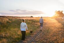 People Walking Dog At Sunset, ...