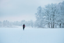 Woman Jogging At Winter, Sweden