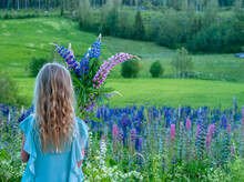 Girl Holding Lupin Flowers, Sweden