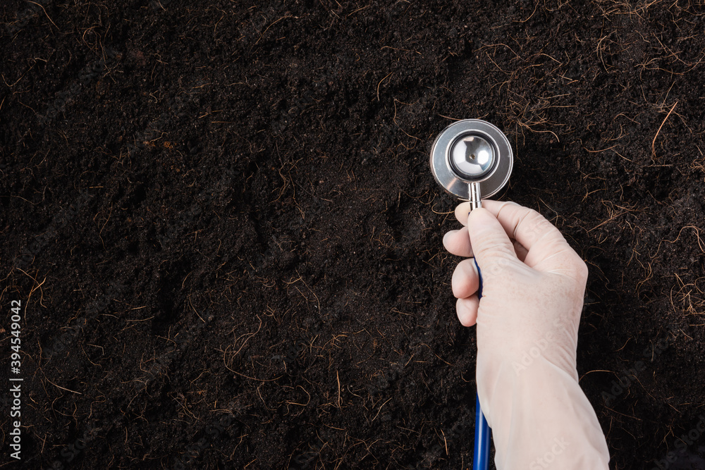 Fototapeta Hand of researcher woman wear gloves holding a stethoscope on fertile black soil for check condition before agriculture or planting, Concept of World Soil Day, Earth day and hands ecology environments