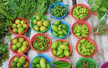 Variety Of Vegetable In Basket...