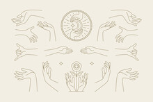 Female Hands Gestures Collection Of Line Art Hand Drawn Style Vector Illustrations.