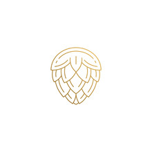 Linear Icon Of Hop Flower Hand Drawn With Thin Lines