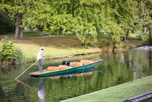 A Punter Making His Way Up The Avon River, Christchurch