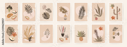 Obraz Abstract organic posters. Fluid organic shapes, neutral natural colors. Trendy contemporary collage artistic prints. Mid Century Modern design. Plant abstraction posters.Grungy textures. EPS10 vector - fototapety do salonu