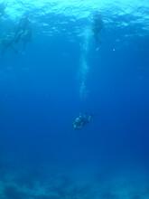 Underwater Scuba Diver , Carib...
