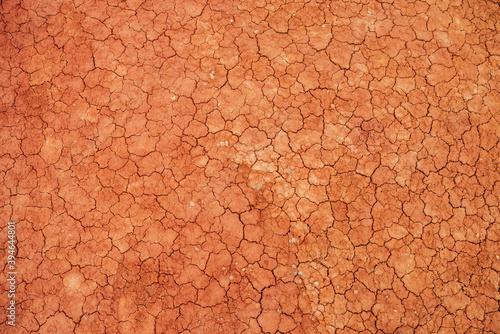 Valokuva Nature background of cracked dry lands