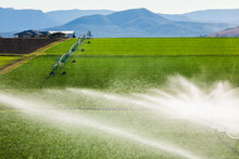 Sprinklers Watering A Green Crop Growing Adjacent To A House On A Hill In Kalbar, Australia.
