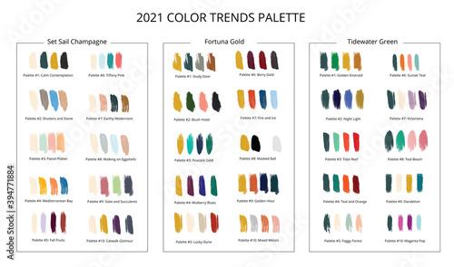 Fotografia 2021 color trends palette on brush strokes