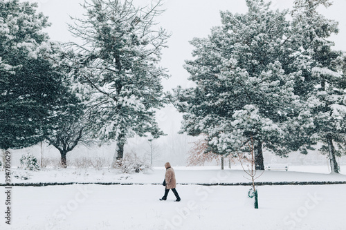 Fototapeta premium Man walking under snow in park. Heavy snowfall and snowstorm in Toronto, Ontario, Canada. Snow blizzard and bad weather winter condition. Beauty in nature. Seasonal conceptual landscape.