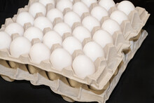 Four Dozen Eggs In A Cardboard Holder