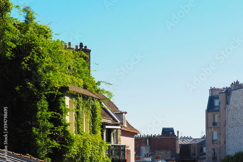 Fotografie, Obraz Houses entwined with green wild grapes, rooftops of Paris
