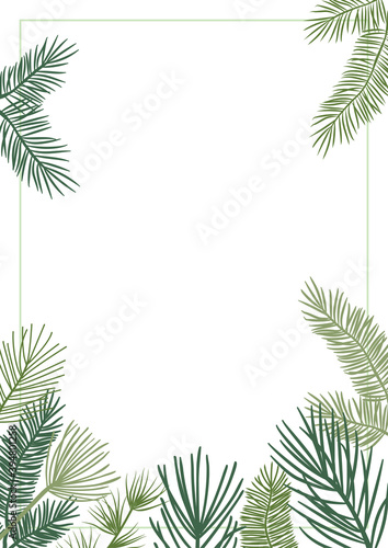 Fototapeta Christmas plant vector border with fir and pine branches, evergreen wreath and corners frames. Nature vintage card, foliage illustration obraz