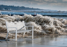 Bench Covered In Ice Sits Beside Grasses Encapsulated In Ice, Along The Shores Of Lake Michigan Usa