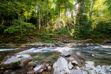 Mountain River In Forest. Wate...