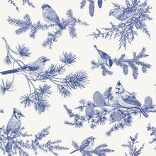 Vintage Vector Seamless Pattern. Winter Birds. Botanical Illustrations. Tit, Robin, Jay, Blue Jay, Bullfinch, Bluebird, Red Cardinal. Blue And White