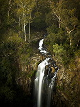 Looking Down On Water Flowing Through Native Bush And Down Queen Mary Falls
