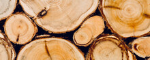 Texture Of Wooden Logs