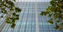 Side Of Glass Multi Storey Building In Mumbai