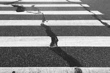 High Angle View Of Paint On Zebra Crossing Over Road