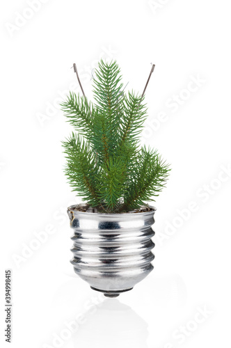 Valokuvatapetti Fir tree with light bulb as ecological concept on white background