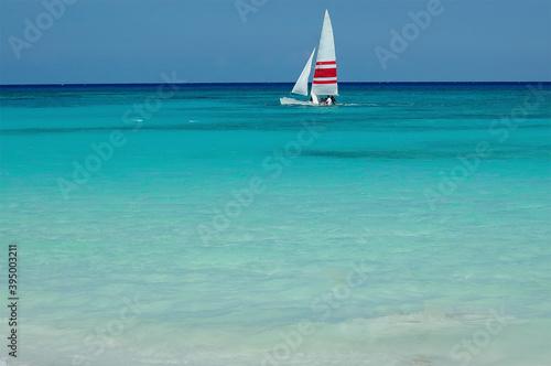 Leinwand Poster A Hobie cat surfs near a tropical beach in Playa del Carmen, Mexico