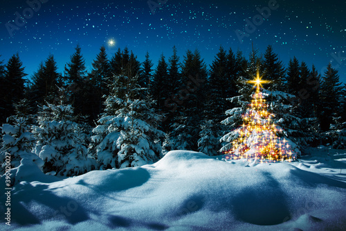 Christmas tree in winter forest and stars sky. Christmas Card.