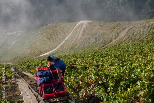 Harvest Elevator, heroic viticulture in the Ribeira Sacra, Galicia, Lugo, Orense, Spain