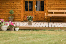 Oleander Plants And Hydrangeas Stand In The Garden On A Wooden Floor Next To A Wooden Garden Shed