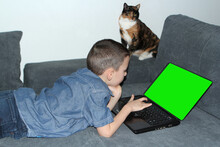 Kid, A Boy Of Primary School Age In Jeans, A Blue Shirt Lies On A Sofa In Front Of An Open Laptop With A Blank Green Screen, A Cat Sits Nearby And Looks, A Concept For Children And The Internet