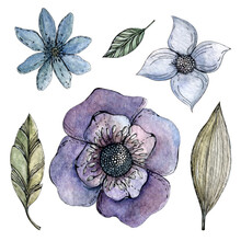 Set Of Watercolor Flowers And Leaves. In Purple And Blue Colors. Isolated Over White Background. Design Of Cards, Invitations, Stickers, Prints, Posters.
