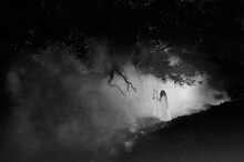Woman Standing In Forest During Foggy Weather