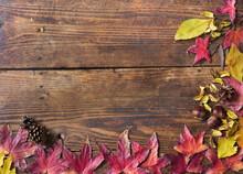 Autumn Still Life With Yellow ...