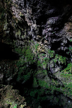 View Of Ornamentation Covered With Green Moss At Mouth Of Gilap Karst Gunungsewu Cave. Twilight Zone