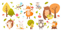 Big Set With Forest Animals On A White Background.