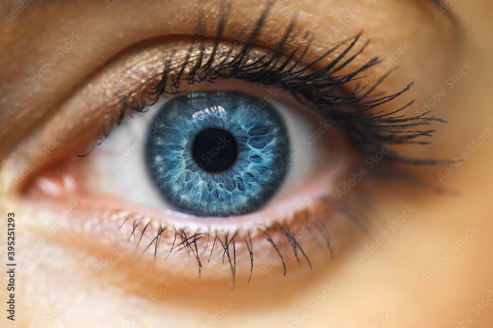 Fototapeta Female Blue Eye With Long Lashes Close Up. Human Eye Macro Detail.