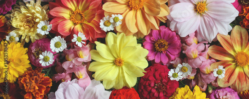 Canvas Print natural background with autumn garden flowers, top view.