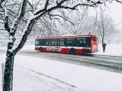 Fototapeta premium Toronto, Ontario, Canada - November 22, 2020: Toronto public transport TTC red bus during heavy winter snowstorm snowfall outdoor in city street. Snow blizzard and bad weather winter condition.