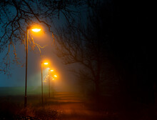 Footpath With Lamp Posts In Foggy Evening
