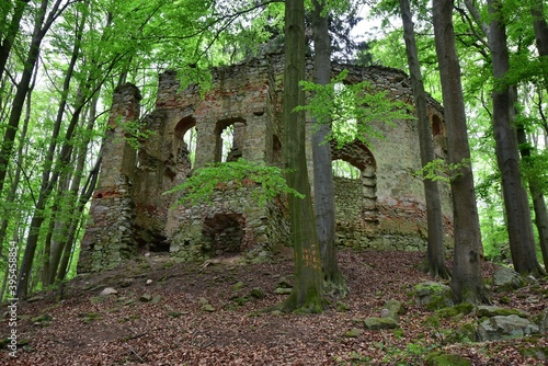 Obraz na plátně St Mary Magdalene Chapel Ruins in Maly Blanik nature reserve is a cultural heritage from 18th century