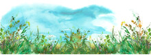 Watercolor Background, Greeting Card, Abstract Drawing - Blue Sky And Wild Grass. Place For Your Design And Text. Art Illustration, Banner. Countryside Landscape.  Grass In The Wind.Suburban Landscape