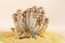 Composition Of A Miniature Worker Figurine Among Mushroom Decorations