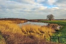 Picturesque Landscape With Aut...