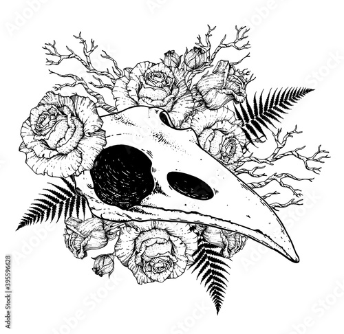 Photo Raven skull and rose flowers