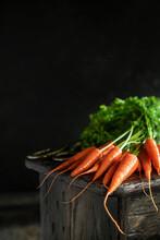 Fresh Harvest Of Carrots
