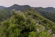 Gubeikou Section Of The Great Wall Of China.