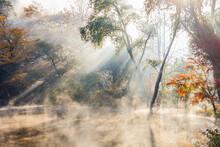 早朝の金鱗湖 光芒 大分県由布市  Kinrin Lake In The Early Morning A Beam Of Light Ooita-ken Yufu City