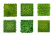 Green Grass Realistic Set
